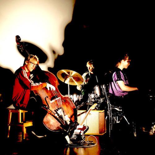 Moskus Trio